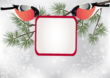 Bullfinch on the branch. Vector illustration stock illustration