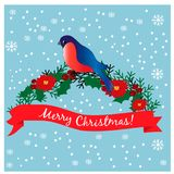 Bullfinch on the branch. Christmas card. EPS 10 vector illustration