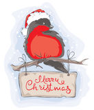 Bullfinch on the branch. Christmas vector illustration, postcard vector illustration