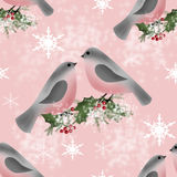 Bullfinch on branch of holly greeting christmas card background. Bullfinch on branch of holly greeting christmas card pink background vector illustration