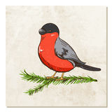 Bullfinch on a branch with old paper background. Bullfinch sits on a branch tree with old paper background. Winter or festive background for your design. Vector vector illustration