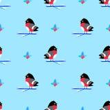 Bullfinch cartoon seamless  pattern, cartoon Stock Image