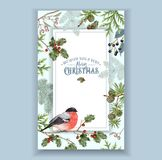 Bullfinch Christmas frame Royalty Free Stock Photo