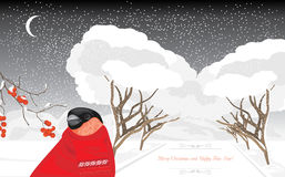 Bullfinch im Winterpark Sankt Klaus, Himmel, Frost, Beutel stock abbildung