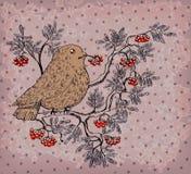 Bullfinch and mountain ash retro background Royalty Free Stock Photo