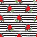 Bullfinch, robin bird hand drawn sketch, striped Seamless Pattern. Vector Illustration. Bullfinch, robin bird hand drawn sketch, striped Seamless Pattern Royalty Free Stock Images