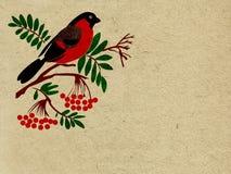 Bullfinch rouge illustration libre de droits
