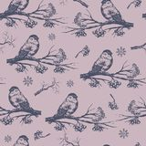Bullfinch seamless pattern, hand drawn sketch. Stock Photography
