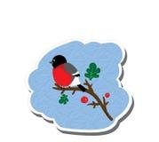 Bullfinch stiker Στοκ Φωτογραφίες