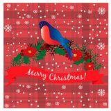 Bullfinch sur le branchement Carte de Noël Photographie stock
