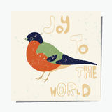 Bullfinch Royalty Free Stock Images