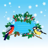 Bullfinch and  tit with Christmas tree Stock Images