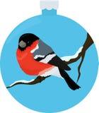 Bullfinch-Vogel illiustration im blauen Weihnachtenbaumball lizenzfreie abbildung