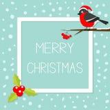 Bullfinch winter red feather bird sitting on rowan. Rowanberry sorb berry tree branch. Santa hat. Holly berry. Cute cartoon funny character. Flat design. Blue Royalty Free Stock Image