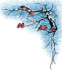 Bullfinches on the branches. Flock of bullfinches perching on tree branches. Vector illustration on white background Stock Image