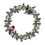 Bullfinches and Christmas wreath of Holly and ivy. Vector illustration vector illustration