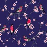 Bullfinches on the sakura branch purple seamless vector pattern Stock Photo