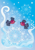 Bullfinches & snowflakes (vector)  Stock Photo
