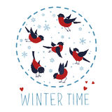 Bullfinches and snowflakes. Vector illustration about winter time. Bullfinches and snowflakes isolated on white background. Vector illustration Royalty Free Illustration