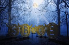 Bullish coins hide in foggy forest 3d illustration stock photos