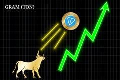 Bullish GRAM TON cryptocurrency chart. Gold bull, throwing up GRAM TON cryptocurrency golden coin up the trend. Bullish GRAM TON chart Royalty Free Stock Photography