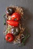 Bullish heart tomatoes Royalty Free Stock Images