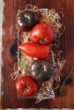 Bullish heart tomatoes Stock Image