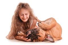 Bullmastiff девушки и собаки Стоковое Изображение