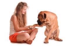 Bullmastiff девушки и собаки Стоковые Фотографии RF