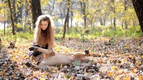 Bullmastiff adolescente de la muchacha y del perro