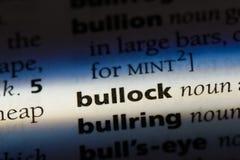 bullock στοκ φωτογραφία