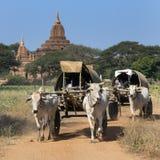 Bagan - το Μιανμάρ Στοκ εικόνα με δικαίωμα ελεύθερης χρήσης