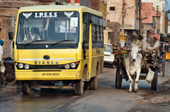 Bullock cart and bus on the road Stock Photo