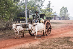 Bullock cart Royalty Free Stock Photos
