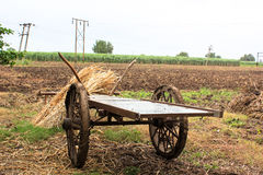Bullock cart India Royalty Free Stock Image
