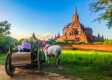 Bullock cart and pagoda at Bagan, Myanmar. Bullock cart, way of transportation for tourist to explore the beautiful scene of Bagan, Myanmar royalty free stock photos