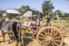 Bullock cart Stock Photography