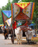 Bullock cart ride Royalty Free Stock Photos