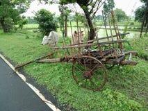 Bullock cart beside the street , textured background wallpaper. stock photography