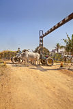 Bullock cart congestion Railway junctions hinte Stock Image