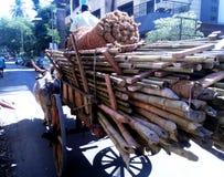 Bullock transportent en charrette le transport local images libres de droits
