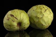 Bullocks or Bulls Heart. Custard apple, also known as Bullocks or Bulls Heart.On black with reflection Stock Photo