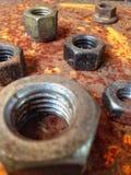 Bulloni d'acciaio dello zinco della ruggine Immagini Stock