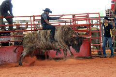 Bullriding at the rodeo Stock Image