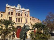 Bullring dokąd matador walczy byka obraz royalty free