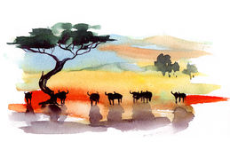 Bulls. Grazing in a tropical valley vector illustration