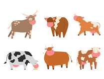 Free Bulls Cows Farm Animal Character Vector Illustration Cattle Mammal Nature Wild Beef Agriculture. Stock Photography - 92024712