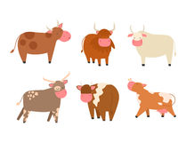 Bulls cows farm animal character vector illustration cattle mammal nature wild beef agriculture. Set of bulls and cows farm animal character vector illustration vector illustration