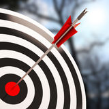 Bulls eye Shot Shows Excellence And Skill. Bulls eye Shot Showing Excellence And Skill And Success royalty free illustration