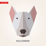 Bullterrier head vector illustration. Royalty Free Stock Photos